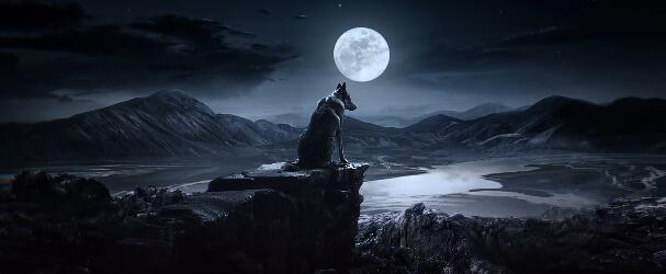Huawei Night Mode 狼月亮